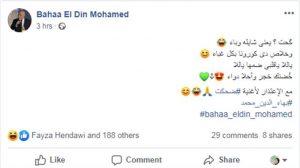 بهاء الدين محمد