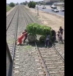 قطار اسكندرية